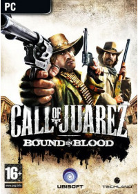 Call of Juarez: Bound in Blood (PC) Steam